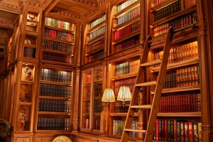 Doug Sr. Home Library Long Wall With Ladder Detail Walnut Wood