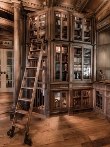 Doug Sr. Home Library Bookshelves With Ladder and Skeleton In Closet